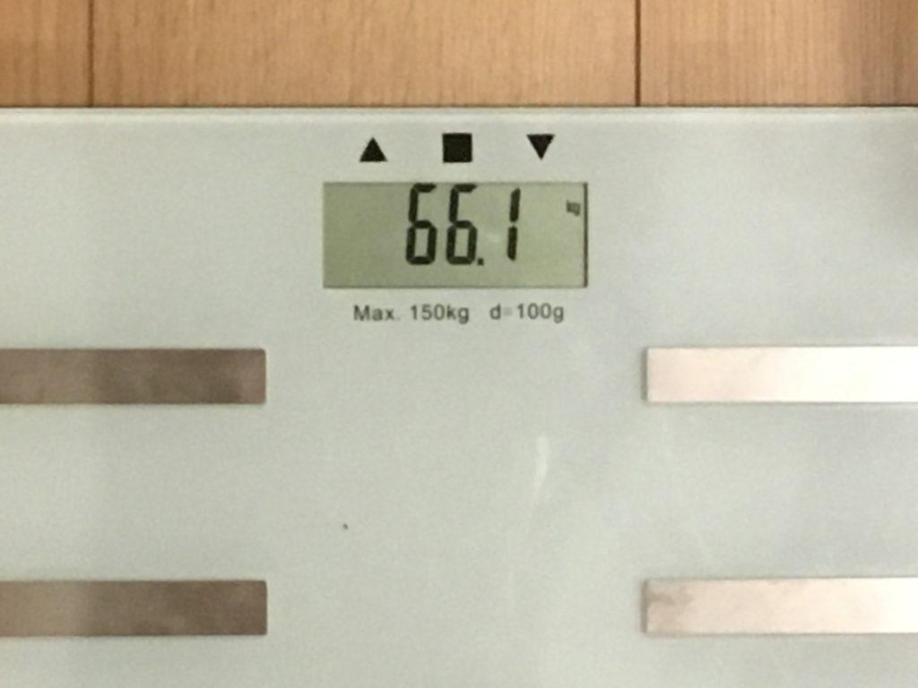 66.1kg