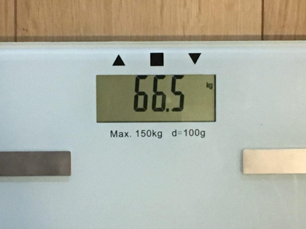 66.5kg