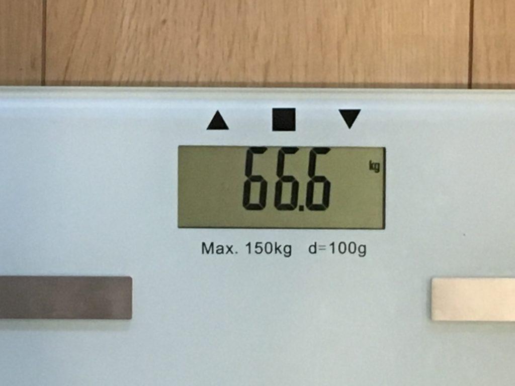 66.6kg