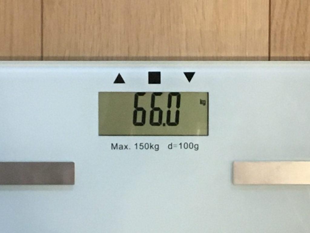 66.0kg